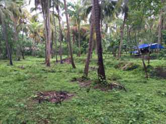 Commercial Land for Sale in Kozhikode, Elathur, Atholi