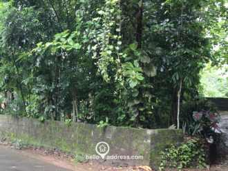 Residential Land for Sale in Ernakulam, Perumbavoor, Vengoor, Panamkuzhi