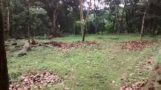 Residential Land for Sale in Kottayam, Changanassery, Elamkunnu