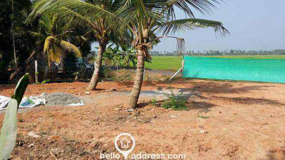 Agricultural Land for Sale in Kottayam, Changanassery, Kurichy