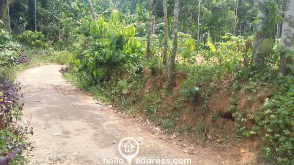 Residential Land for Sale in Pathanamthitta, Adoor, Parakode