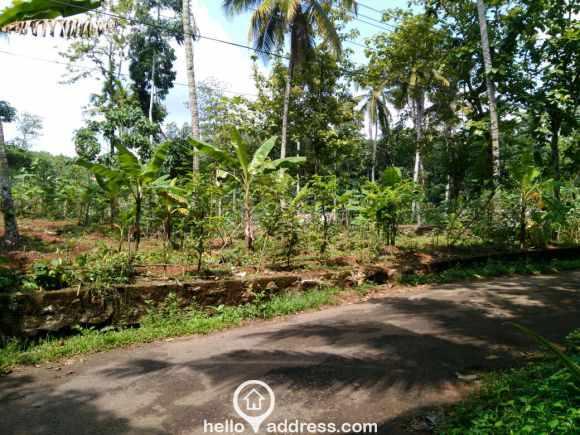 Agricultural Land for Sale in Kollam, Kottarakkara, Thrikkannamangal