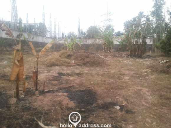Residential Land for Sale in Kottayam, Changanassery, Thrikkodithanam