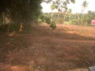 Residential Land for Sale in Ernakulam, Angamaly, Angamaly