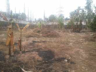 Residential Land for Sale in Kottayam, Changanassery, Thrikkodithanam