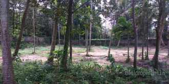 Residential Land for Sale in Ernakulam, Vyttila, Vyttila hub, Eroor