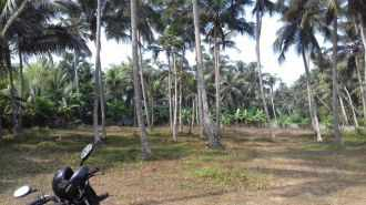 Residential Land for Sale in Malappuram, Edappal, Edappal, Changaramkulam