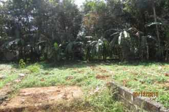 Residential Land for Sale in Ernakulam, Muvattupuzha, Muvattupuzha town, Kaliyar
