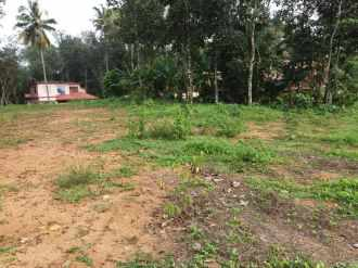 Residential Land for Sale in Pathanamthitta, Adoor, Anadhapalli