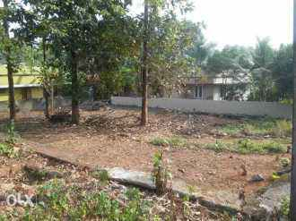 Residential Land for Sale in Ernakulam, Aluva, Chunagamveli