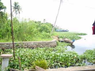 Commercial Land for Sale in Alleppey, Alapuzha, Aryad