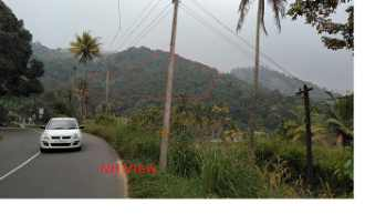 Agricultural Land for Sale in Idukki, Adimali, Adimali, 14thmile