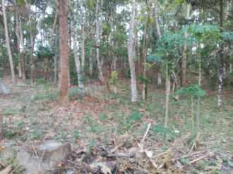 Commercial Land for Sale in Kollam, Kottarakkara, Pulamon