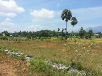 Residential Land for Sale in Palakad, Palakkad, Chandranagar