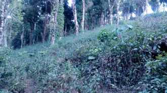 Commercial Land for Sale in Idukki, Munnar, Munnar