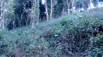 Commercial Land for Sale in Idukki, Munnar, Munnar