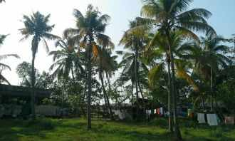 Residential Land for Sale in Ernakulam, Vypin, Vypin