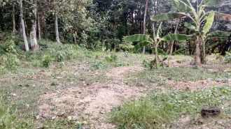 Residential Land for Sale in Kollam, Kunnathur, Kunnathoor, Thuruthikkara
