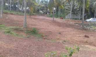 Residential Land for Sale in Trivandrum, Thiruvananthapuram, Thiruvallom, Punchakkari