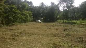 Residential Land for Sale in Malappuram, Manjeri, Koomankulam