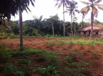 Commercial Land for Sale in Kottayam, Kottayam, Nattakam