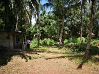 Residential Land for Sale in Alleppey, Haripad, Veeyapuram