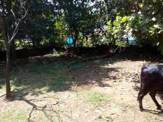 Residential Land for Sale in Kannur, Puthiyatheru, Kadalayi