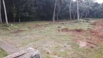 Residential Land for Sale in Pathanamthitta, Pathanamthitta, Elavanthitta, Ambalakadav