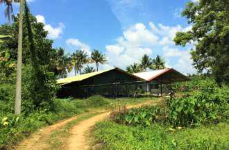 Agricultural Land for Sale in Thrissur, Chalakudy, Chalakkudy, Annalloor