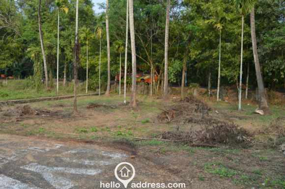 Residential Land for Sale in Ernakulam, Nedumbassery, Nedumbassery