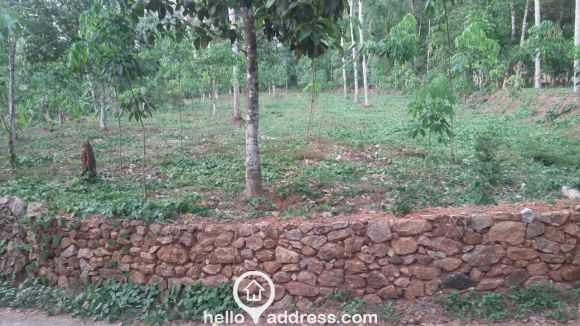 Residential Land for Sale in Pathanamthitta, Kozhencherry, Aranmula