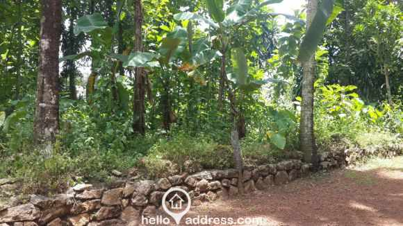 Residential Land for Sale in Alleppey, Chengannur, Kodukulanji