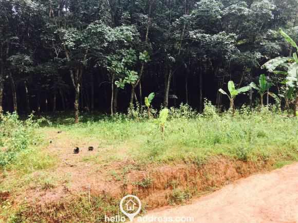 Residential Land for Sale in Kottayam, Kottayam, Divanpuram
