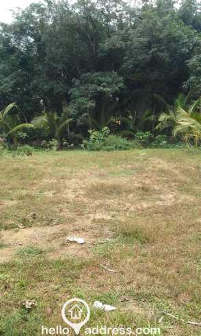 Residential Land for Sale in Kottayam, Changanassery, Changanassery