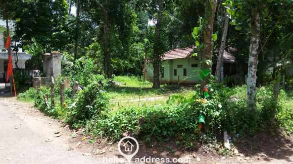 Residential Land for Sale in Alleppey, Mavellikkara, Thattarambalam