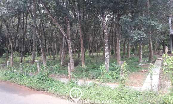 Residential Land for Sale in Pathanamthitta, Pandalam, Pandalam