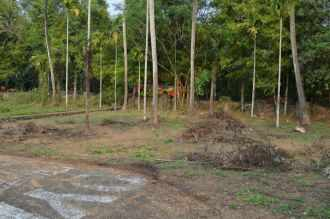 Residential Land for Sale in Ernakulam, Nedumbassery, Nedumbassery