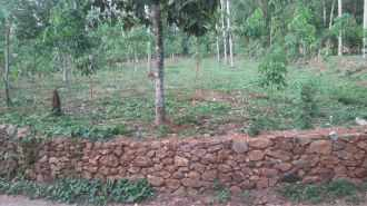 Residential Land for Sale in Pathanamthitta, Kozhencherry, Aranmula, Neervilakom