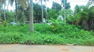 Residential Land for Sale in Alleppey, Alapuzha, Thathampally