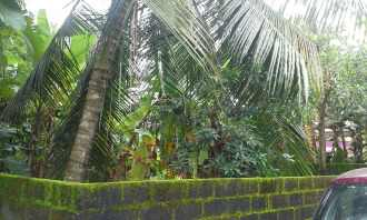 Residential Land for Sale in Kottayam, Changanassery, Changanassery, Laikad