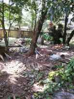 Residential Land for Sale in Ernakulam, Thoppumpady, Thoppumpady