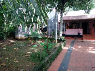 Residential House/Villa for Sale in Ernakulam, Chottanikkara, Thiruvaniyoor, Kuzhiyara