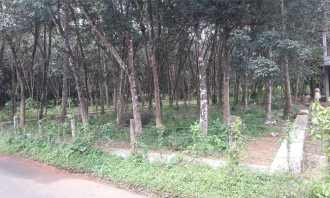 Residential Land for Sale in Pathanamthitta, Pandalam, Pandalam