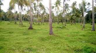 Residential Land for Sale in Ernakulam, Paravur, Paravur