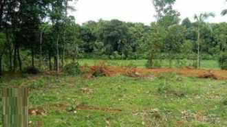 Residential Land for Sale in Ernakulam, Muvattupuzha, Valakam