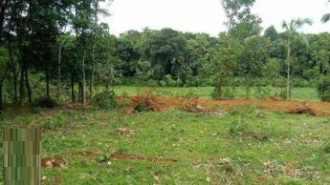 Residential Land for Sale in Ernakulam, Muvattupuzha, Valakam
