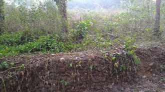 Residential Land for Sale in Kottayam, Vaikam, Velloor, Mevalloor