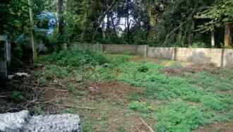 Residential Land for Sale in Ernakulam, Angamaly, Karukutty, Adlux International Convention