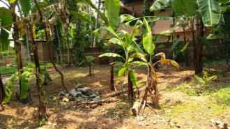Residential Land for Sale in Trivandrum, Thiruvananthapuram, Pattom, Chalakkuzhy Road