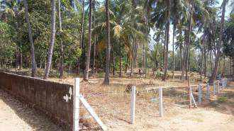 Residential Land for Sale in Palakad, Pattambi, Pattambi